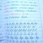 Из жизни моей первоклашки) Первые пол года учебы пролетели!!!