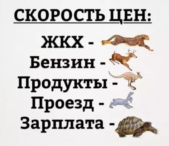 Такая жизнь)