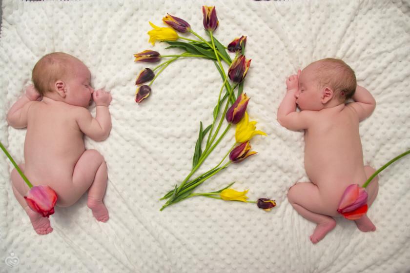 Поздравление с 1 месяцем двойняшек картинки, подписать открытку для