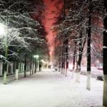 Белок и зимы в ленту)